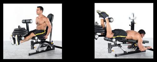 Эллиптический тренажер bh fitness athlon program g2336n инструкция